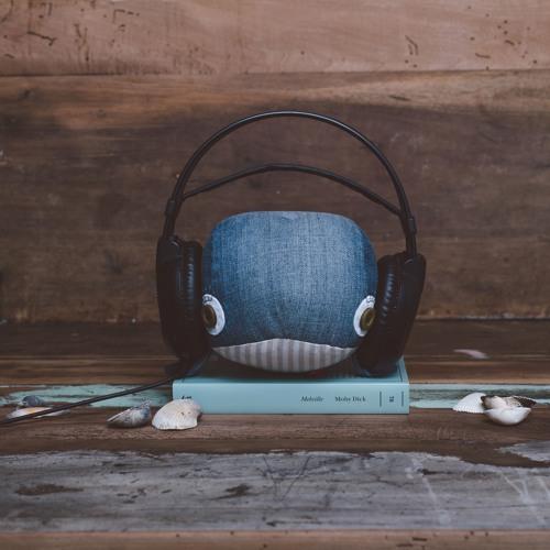 Idee Audio Per Il Tuo Business