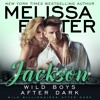 Wild Boys After Dark: Jackson by Melissa Foster, Narrated by Paul Woodson