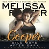 Wild Boys After Dark: Cooper by Melissa Foster, Narrated by Paul Woodson