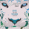 Survivor Eye Of The Tiger G Papa Remix Mp3