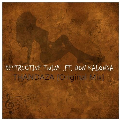 Distructive Twins_Thandaza feat Don Kalonga (Original Mix)