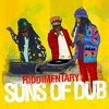 Riddimentary | Suns Of Dub Selects Greensleeves | Preview
