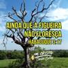 CANÇÃO DE HABACUQUE - GUERREIROS EM CRISTO