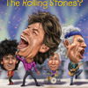 Who Are the Rolling Stones? by Dana Meachen Rau, read by Will Damron
