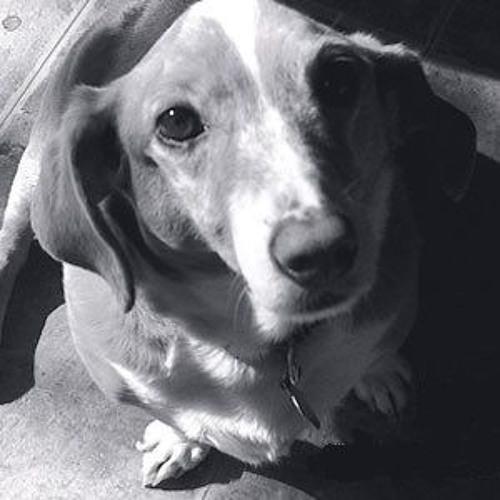 Thomas Åberg: Weisflog's Dog (radio version)