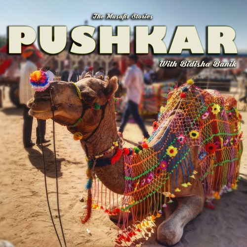 TMS #004 Explore Pushkar with Bidisha