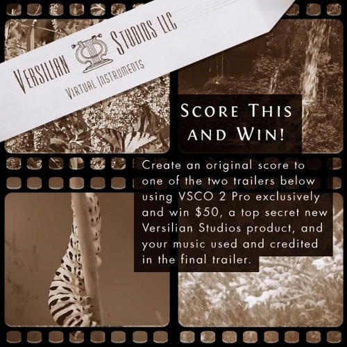 VSCO 2 Scoring Contest