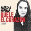 Duele El Corazon (Enrique Iglesias Cover)