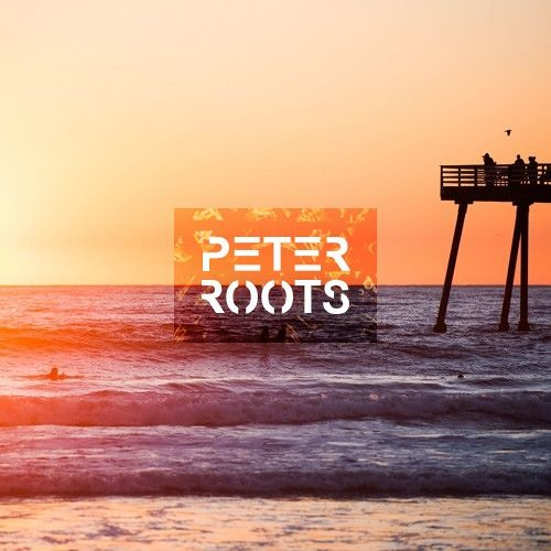Peter Roots - Summer Madness (Original Mix)