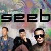 DJ Seeb-play Mix
