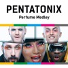 Pentatonix - Perfume Medley cover by me