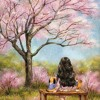 [Nhạc Hoa]-[中国音乐]-(Ting Ma Ma De Hua) /听妈妈的话/Hãy nghe lời mẹ- Jay Chou/Châu Kiệt Luân