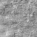 nexus crypto - Distant Tierra
