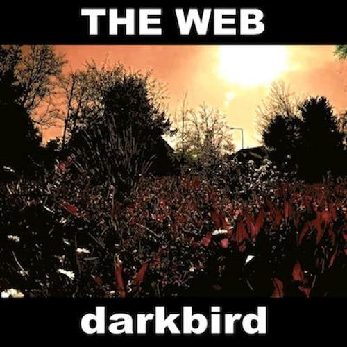 THE WEB - darkbird