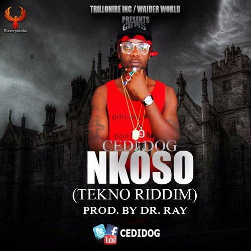 CEDI DOG -- NKOSO (prod By DR Ray Beat, Mixed By AKTheBeatz)