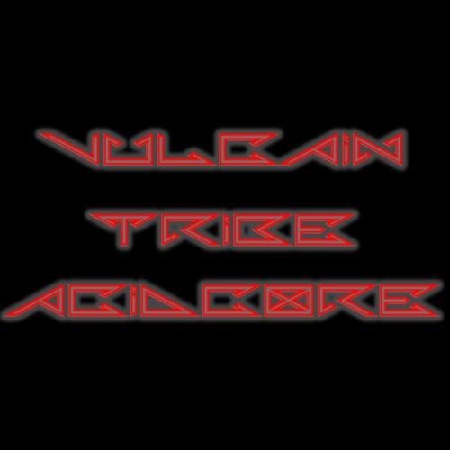 VULCAIN TRIBE & ACIDCORE DJ SET@2017 - 03