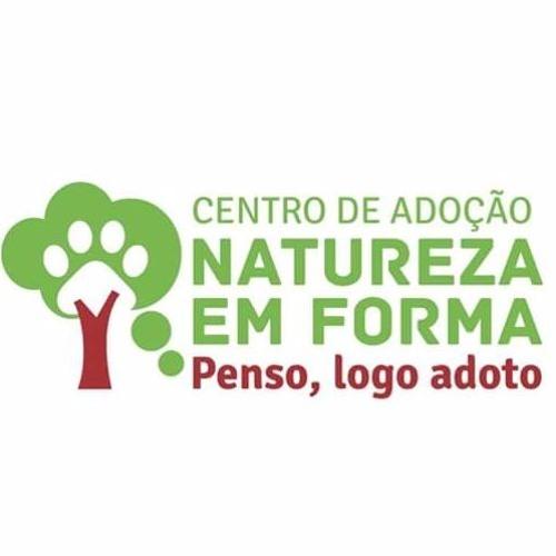 Saiba mais sobre o vegetarianismo, com a presidente honorária da Sociedade Vegetariana Brasileira