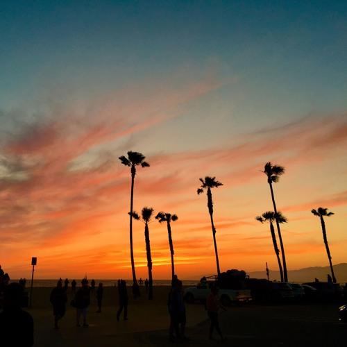 The Venice Beach Mix 2017