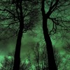 le grand rêve, op. 4 (l'album vert)