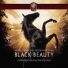 Black Beauty Theme (Piano Solo Cover) // Danny Elfman
