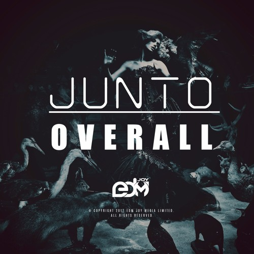 JUNTO - Overall