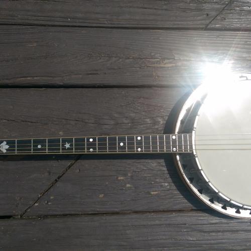 Happy Banjo Slow Reel