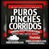PUROS PINCHEZ CORRIDOS   MIXx