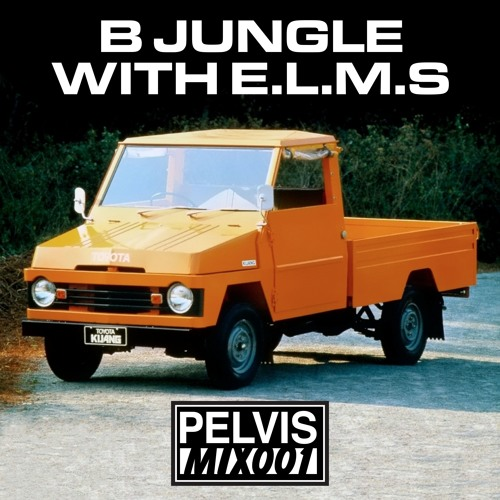 MIX001 by B JUNGLE WITH E.L.M.S.