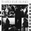 -Third Eye Blind- 4. Losing a Whole Year To The God of Wine