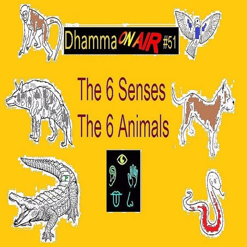 Dhamma On Air #51 Audio: The 6 Animals ...
