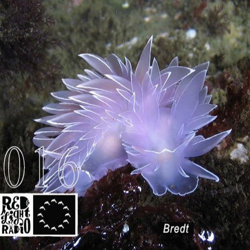 Deep Sea Discotheque Radio 016 ~ Bredt