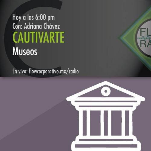 CautivArte 065 - Museos