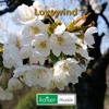 Lovewind ====> free Download