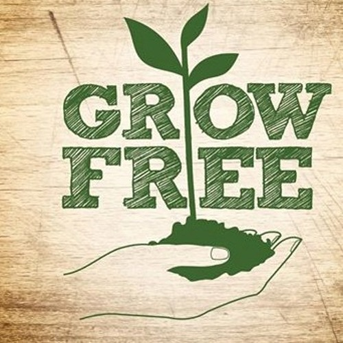 Grow Free - Andrew Barker Interview - Affordable SA