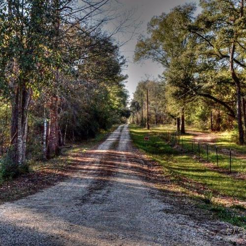Louisiana Backroads