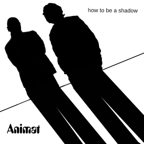 How To Be A Shadow