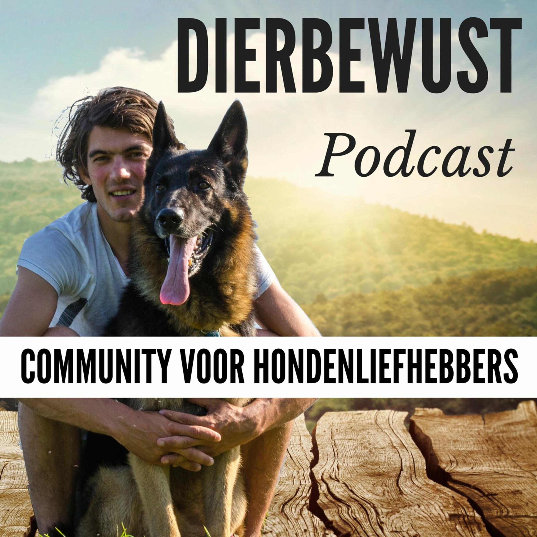 DB 031 - Waarom 70% Van De Gedragsproblemen Bij Honden Ontstaan Door PIJN