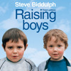 Raising Boys, By Steve Biddulph, Read by Damien Warren-Smith