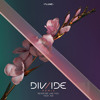 Flume - Never Be Like You (DIV/IDE Remix)