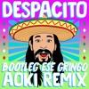 Steve Aoki - Despacito (Bootleg Ese Gringo Aoki Remix) [FREE DOWNLOAD]