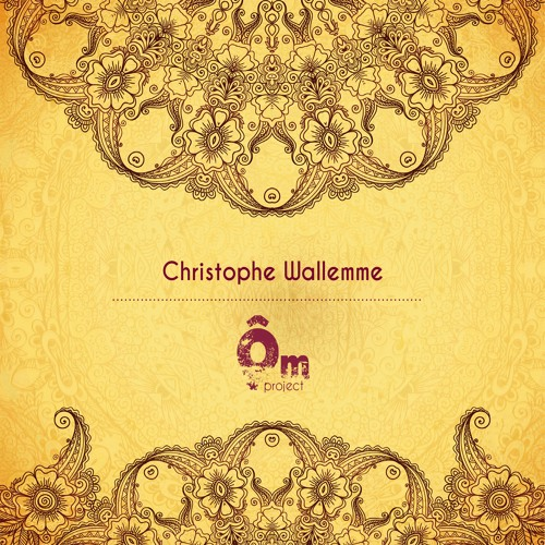 Christophe Wallemme - Ôm Project