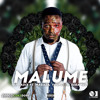 Malume Ft. Maraza, Youngsta CPT, Reba Red