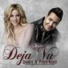 Prince Royce Ft Shakira - Deja Vu (Rajobos Extended) Copyright