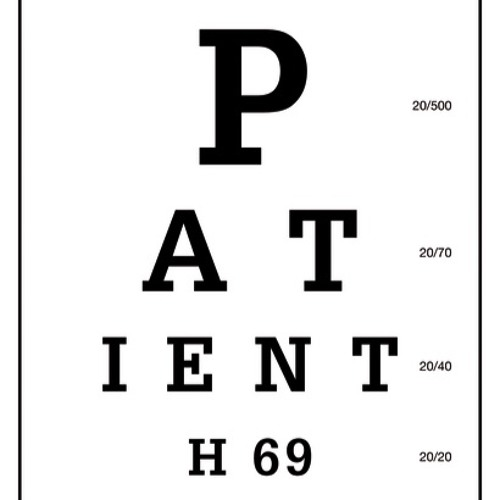 Patient H69: The Story of my Second Sight by Vanessa Potter Photo Descriptions