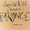 DAYS 'O' WILD MIX(A TRIBUTE 2 PRINCE)