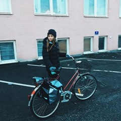 Bicycling In Malmoe (One hour song)