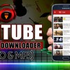 FVD Tube Youtube Downloader (Video & Mp3)