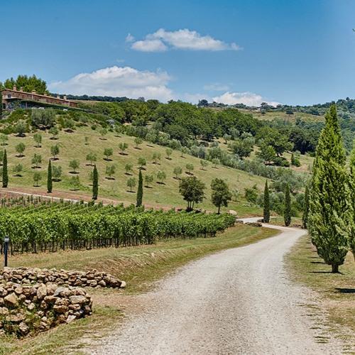 Sustinet red wine produced by Conti di San Bonifacio