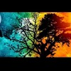 Charly O ft Makaenne - Con La Luna Y El Sol Portada del disco