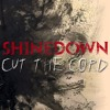 Cut The Cord Shinedown Cover Mix Mp3